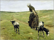 Vinilo para la pared  Woman with goats in the dunes - Max Liebermann