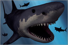Vinilo para la pared  A Megalodon shark from the Cenozoic Era - Mark Stevenson