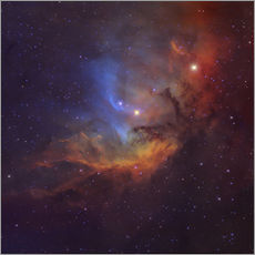 Vinilo para la pared The Tulip Nebula in Cygnus