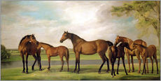 Vinilo para la pared  Mares, foals and an approaching storm - George Stubbs