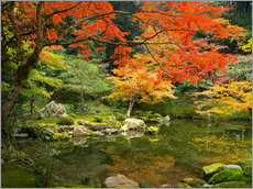 Cuadro de plexi-alu  Japanese garden in autumn with red maple tree - Jan Christopher Becke
