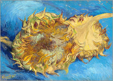 Cuadro de plexi-alu  Two sunflowers - Vincent van Gogh