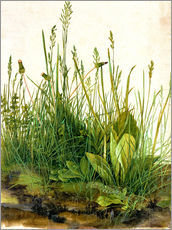 Albrecht Dürer - The great piece of turf
