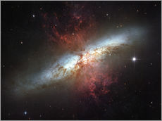 Cuadro de plexi-alu  Starburst galaxy, Messier 82 - Stocktrek Images