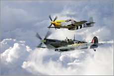 Vinilo para la pared  Flying Brothers - airpowerart