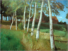 Vinilo para la pared  Birches in the marsh - Otto Modersohn