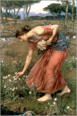Cuadro de plexi-alu  Narciso - John William Waterhouse