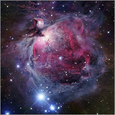 Vinilo para la pared  The Orion Nebula - Robert Gendler
