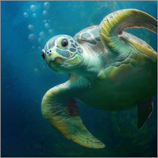 Vinilo para la pared  Bubbles, the cute sea turtle - Photoplace Creative