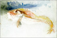 Cuadro de plexi-alu  A Gurnard - Joseph Mallord William Turner