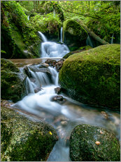 Cuadro de plexi-alu  Little Waterfall in Black Forest - Andreas Wonisch