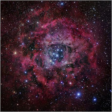 Vinilo para la pared The Rosette Nebula