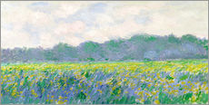Vinilo para la pared  Field of Yellow Irises in Giverny - Claude Monet