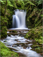 Cuadro de plexi-alu  Waterfall of Geroldsau in the Black Forest - Andreas Wonisch