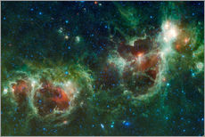 Vinilo para la pared  Infrared mosaic of the Heart and Soul nebula - Stocktrek Images