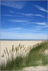 Vinilo para la pared  Summer beach grass - Susanne Herppich
