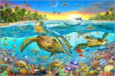 Vinilo para la pared  Turtle Cove - Adrian Chesterman