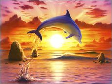 Cuadro de plexi-alu  Day of the dolphin - sunset - Robin Koni