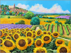 Vinilo para la pared  Vineyards and sunflowers in Provence - Jean-Marc Janiaczyk