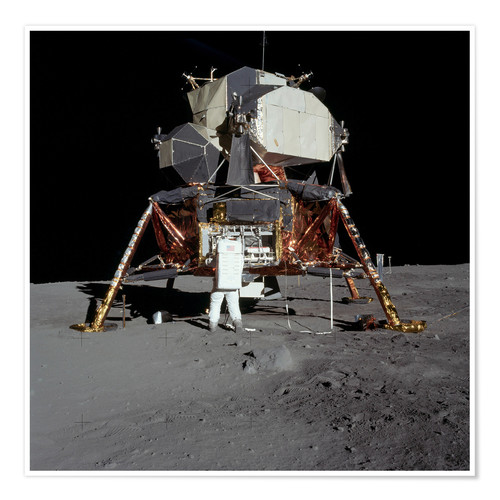Póster An Apollo 11 astronaut before the Lunar Module