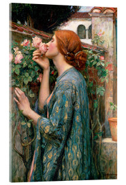 Cuadro de metacrilato  Alma de la rosa - John William Waterhouse