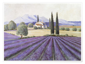 Póster  Lavender Fields - Franz Heigl