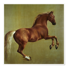 Póster  Whistlejacket - George Stubbs