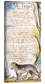 Lienzo  El tigre (inglés) - William Blake