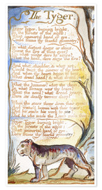 Póster  El tigre (inglés) - William Blake