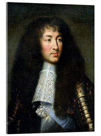 Metacrilato  Portrait of Louis XIV - Charles Le Brun