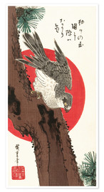 Póster  Falcon, Pine, and New Year Sunrise - Utagawa Hiroshige