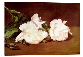 Cuadro de metacrilato  Branch of White Peonies and Secateurs - Edouard Manet