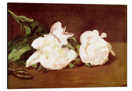 Cuadro de aluminio  Branch of White Peonies and Secateurs - Edouard Manet