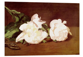 Cuadro de PVC  Branch of White Peonies and Secateurs - Edouard Manet