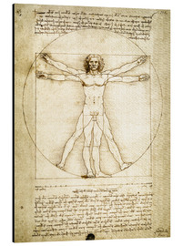 Aluminio-Dibond  The Proportions of the human figure - Leonardo da Vinci