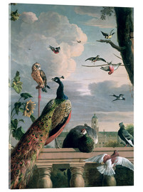 Metacrilato  Palace of Amsterdam with Exotic Birds - Melchior de Hondecoeter
