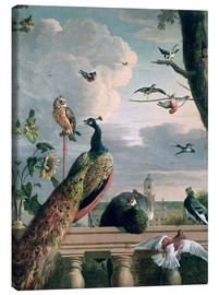Lienzo  Palace of Amsterdam with Exotic Birds - Melchior de Hondecoeter