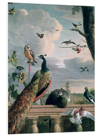 Forex  Palace of Amsterdam with Exotic Birds - Melchior de Hondecoeter