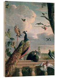 Madera  Palace of Amsterdam with Exotic Birds - Melchior de Hondecoeter