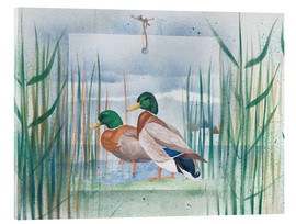 Cuadro de metacrilato  Pair of wild ducks - Franz Heigl
