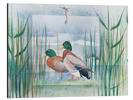 Cuadro de aluminio  Pair of wild ducks - Franz Heigl