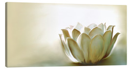 Lienzo  White Lotus - Christine Ganz