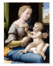 Póster  Madonna and child - Raffael