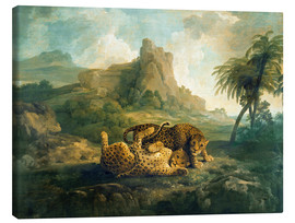 Lienzo  Leopards at Play - George Stubbs