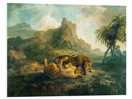 Cuadro de PVC  Leopards at Play - George Stubbs
