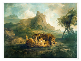 Póster  Leopards at Play - George Stubbs