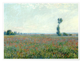 Póster  Field with poppies - Claude Monet