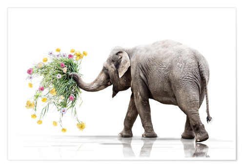 Póster Elephant with Flower