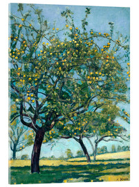Cuadro de metacrilato  Paddock with apple trees - Ferdinand Hodler