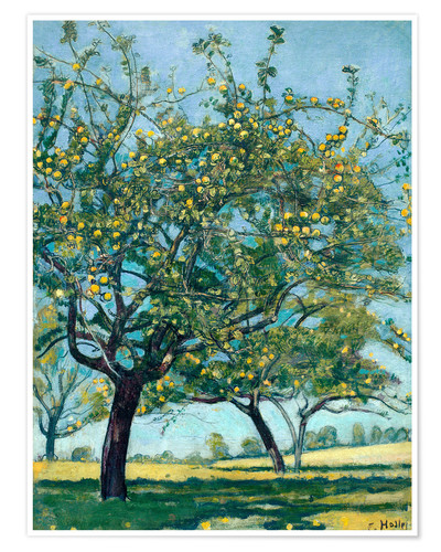 Póster Paddock with apple trees